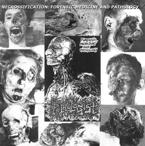 BLP 313 PATHOLOGIST - Forensic Medicine And Pathology CD